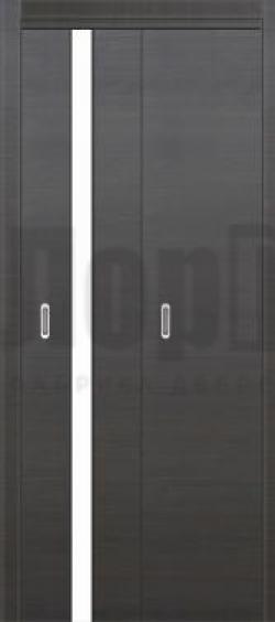 Дверь книжка Модель 1